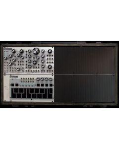 Pittsburgh Modular - Lifeforms System 301